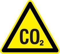 Co2 sign cv