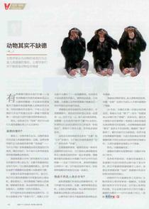 Xinmin cv