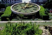 Garden clock landscape cv