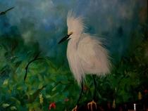 D.o snowy egret cv