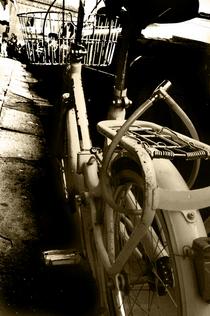Firenzebike cv