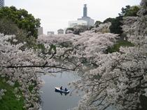 Tokyo cv