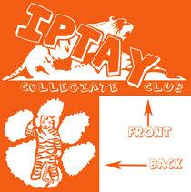 Iptay shirt cv