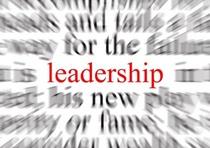 Leadership training cv