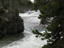 Upperfalls yellowstone river 2008 cv