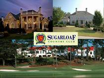 Sugarloaf cv