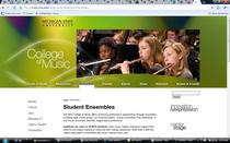 Music web site cv
