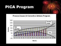 Pica program cv