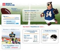 Popular bear football cv