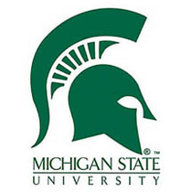 Michigan state logo cv