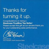 Steelcase cv