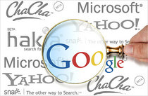 Google search 2 cv