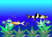 Fish scene cv