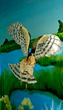 Owl cv
