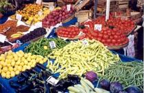 Vegetables cv