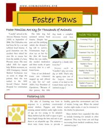Fosterpaws page 1 cv