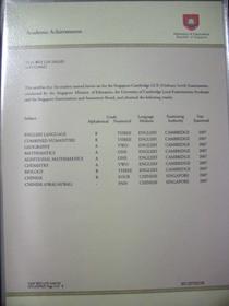 Dscn1100 cv