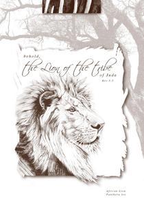 Lion card cv
