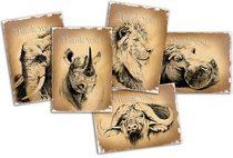 Animal cards 2 comp cv
