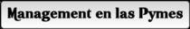 Management en las pymes cv