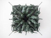 Green plastic armt men 6a cv