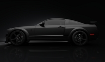 Mustang black version cv