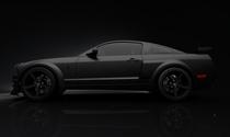 Mustang black version cv