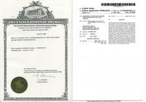 Us patent no. us2004 0033501 cv