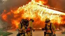 Calif wildfire cv