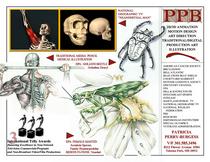 Ppb pix23 cv