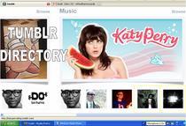 Tumblog directory cv