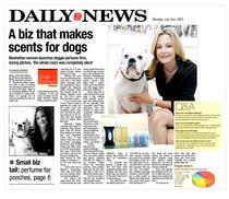 Daily news cv
