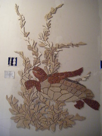 Rt side of 12ft by 8ft tile turtle mural back ground still to be finished 09 cv