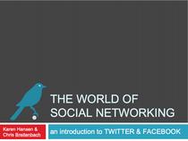 Socialnetworking cv