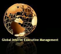 Giem globe logo cv