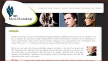 Ibs website cv