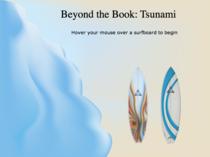 Tsunamihome cv