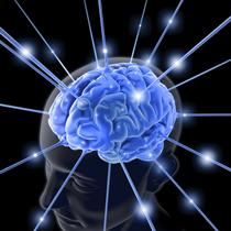 Brain cv