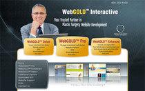 Aspswebgold com cv