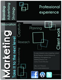 Marketingflyer cv