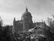 Salamancacathedral cv