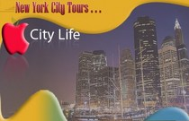 City2 cv