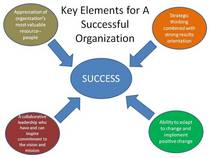 Key elements for a successful organization cv