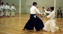 Japanese sword cv