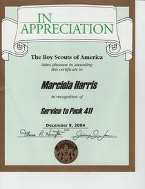 Boy scouts scoutreach cv