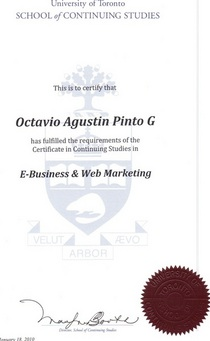 E business and web marketing certificate cv