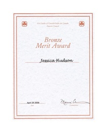 Bronze merit cert cv