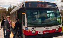 Belleville transit web cv