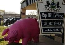 Pink pig cv