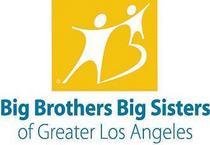 Big brothers cv